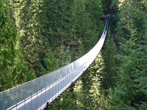 Amazing Places: Capilano Suspension Bridge