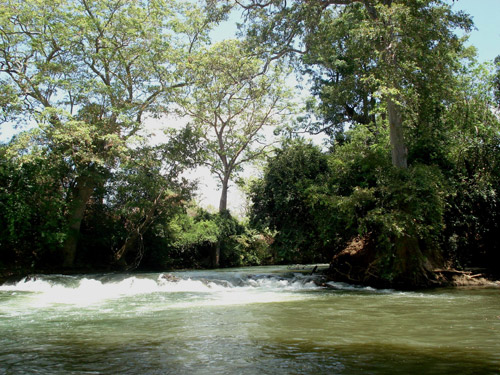 River inside the Udawalawe Jungle